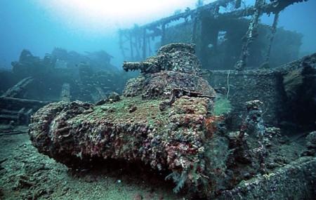 Tanques Naturaleza 1