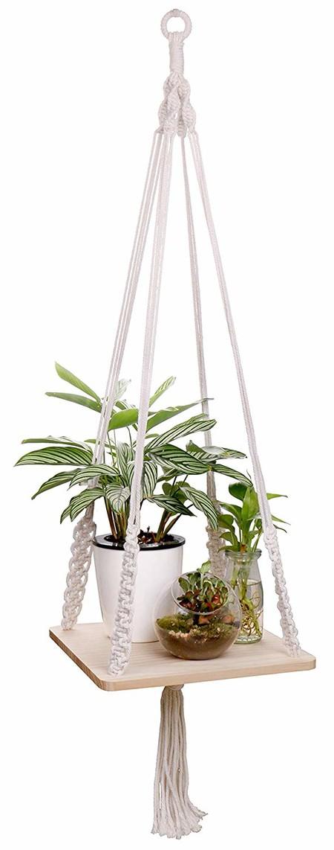 planta colgar