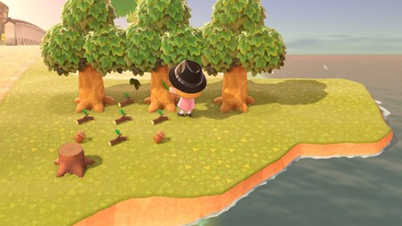 Animal Crossing New Horizons Guia 21