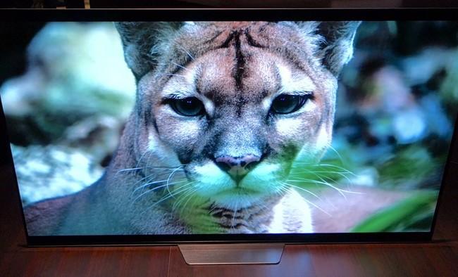 Sony OLED AF8 y XF90, primeras impresiones: los televisores 4K alcanzan su madurez