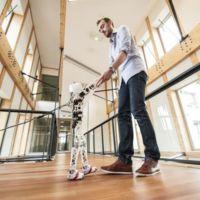 Poppy es un robot humanoide que tú mismo te puedes montar