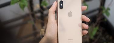 El DNI electrónico japonés tendrá soporte para iPhone con iOS 13, acercando la administración digital a los ciudadanos