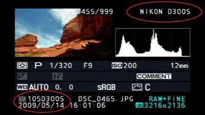Rumor: Nueva Nikon D300s