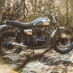 Foto 99 de 99 de la galería kawasaki-w800-deus-ex-machina en Motorpasion Moto
