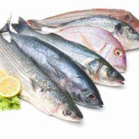 Los pescados con más vitamina D