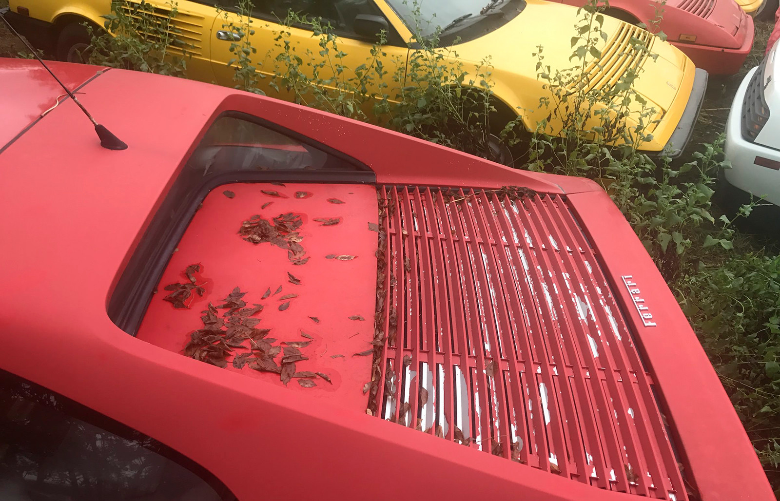 Foto de Once Ferraris abandonados en un solar de Texas (3/14)