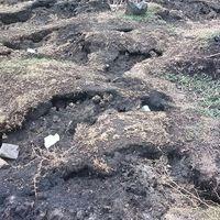 En un pueblo de Michoacán, México, la tierra se agrietó y brotaron materiales incandescentes