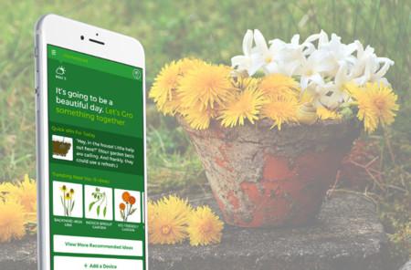 El móvil, los sensores y nuestras plantas: bienvenidos a la jardinería inteligente
