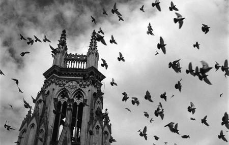 """PallantiaPhoto 2018, el Festival de fotografía de Palencia, prepara un """"salto de calidad"""" para su quinta edición"""