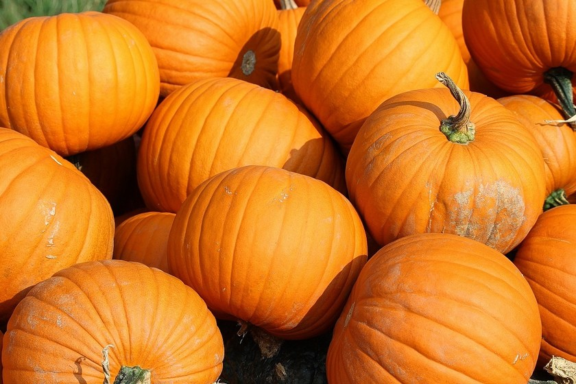 https://i.blogs.es/703eab/pumpkins-457716_1280/840_560.jpg
