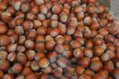 Los frutos secos más destacados del otoño