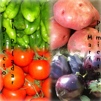 Fitonutrientes… el color de los vegetales