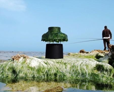 Marine Light, la lámpara de algas firmada por Nir Meiri