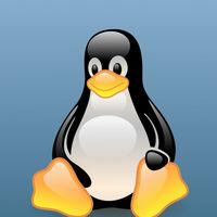 """Se acabaron los términos como """"esclavo"""" y """"lista negra"""" en Linux: los desarrolladores tendrán que usar lenguaje inclusivo"""
