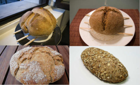 Adivina, adivinanza: ¿Qué tipo de pan contiene más proteínas?