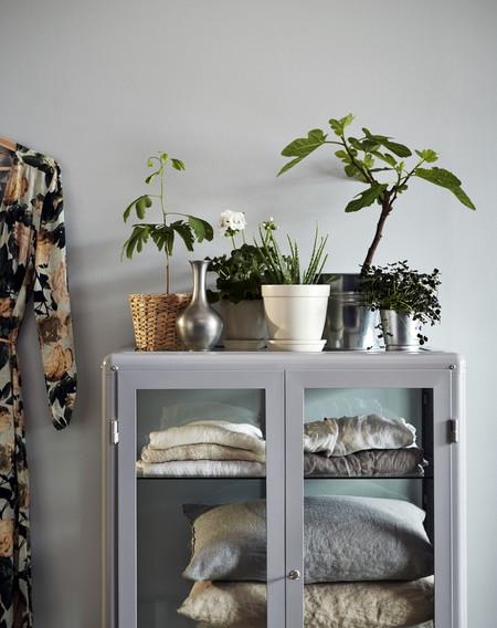 Ikea Plantas Ph144996