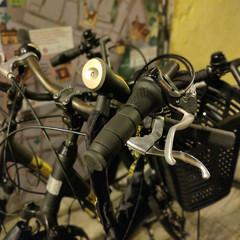 Foto 36 de 52 de la galería oneplus-7-galeria-fotografica en Xataka