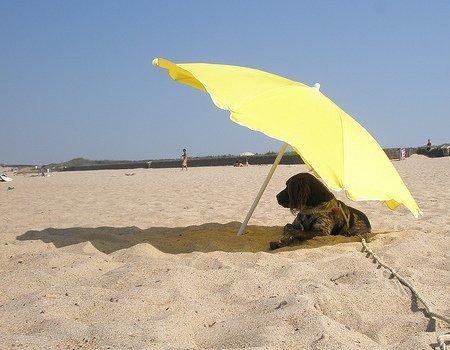 3 situaciones en que no debes olvidar el protector solar