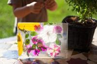 Manualidades con niños: marco de fotos con flores y hojas