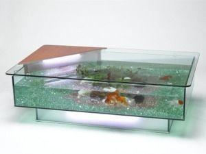 Un acuario algo particular