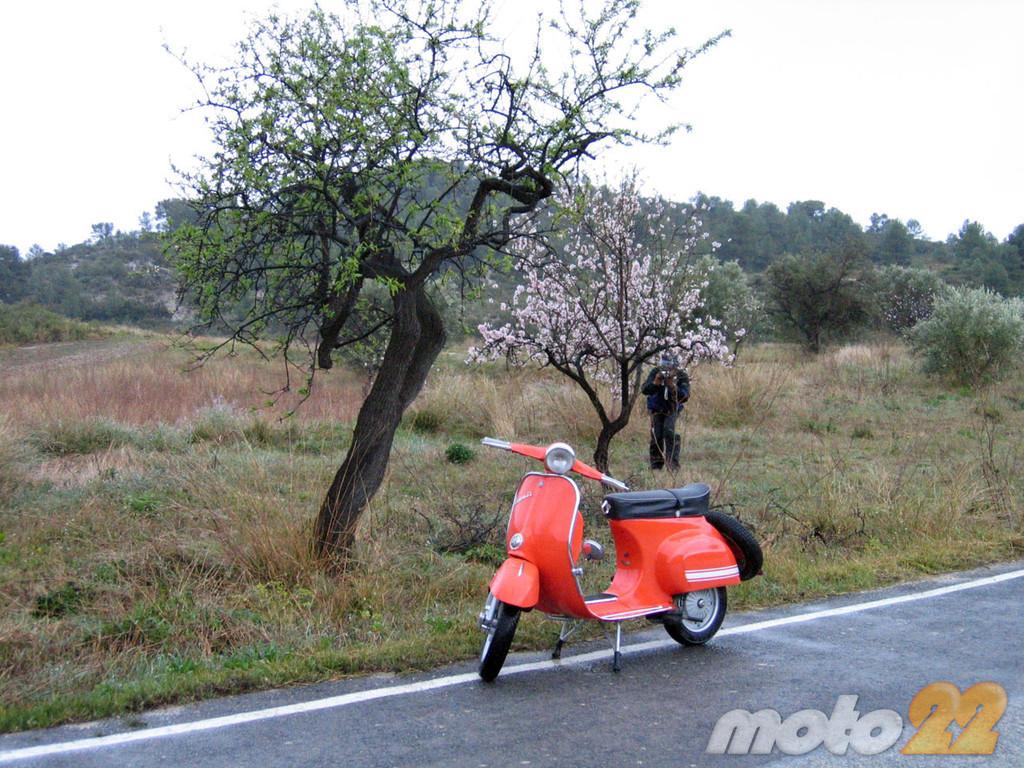 Foto de La ruta (fallida) de los almendros en flor (8/8)