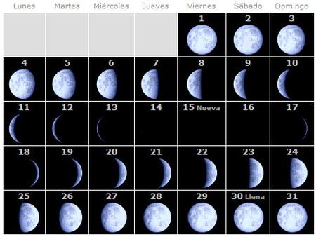 calendario-lunar-enero.jpg
