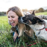 """La tontería antivacunas llega a los perretes: algunos dueños no les vacunan por miedo al """"autismo canino"""""""