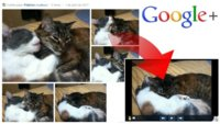 Como obtener un pase de diapositivas de las imágenes que subimos a Google+