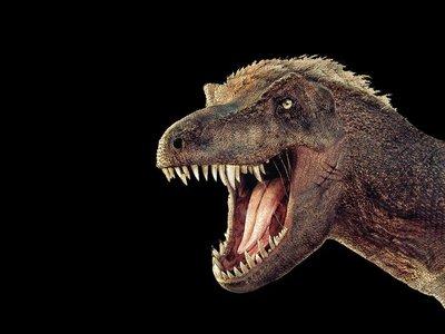 Vacaciones con niños: Navidad entre dinosaurios en el CosmoCaixa (Barcelona)
