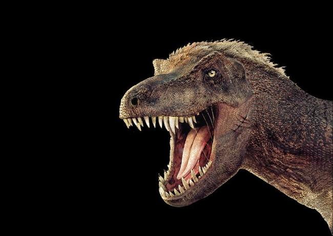 Navidad Entre Dinosaurios Cosmocaixa