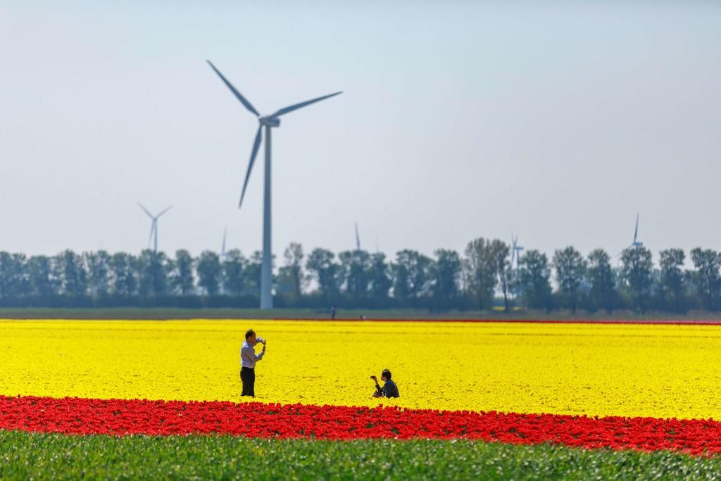 España se sube la ola mundial de 2,6 billones de dólares de inversiones en renovables: la fotovoltaica ha crecido un 28% este año