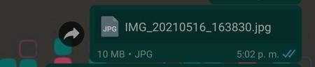 Cómo enviar documentos archivos grandes Whatsapp