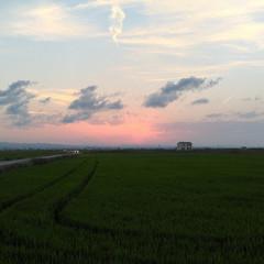Foto 33 de 34 de la galería asus-zenfone-ar en Xataka