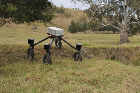 Los robots llegan a la granja para jubilar al perro pastor: SwagBot