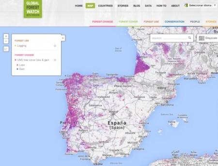 Vizzuality, la startup española 'detrás' de los mapas de deforestación de Google