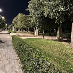 Foto 2 de 31 de la galería iphone-12-pro-max-fotos-en-baja-luminosidad en Applesfera