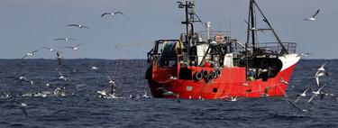 Los científicos no se ponen de acuerdo sobre si hemos explotado el 55% o solo un 4% del océano, utilizando los mismos datos