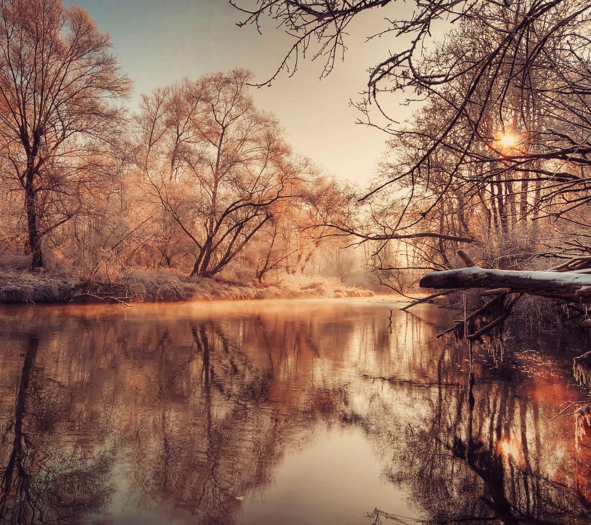 Foto de Sony Xperia Z2 (12/29)