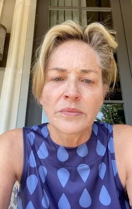 Sharon Stone, destrozada tras la muerte de su sobrino River de tan solo 11 meses