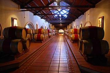 Icono, el vino argentino más caro del mercado