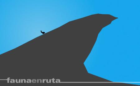 fauna en ruta: la cabra bajando del monte