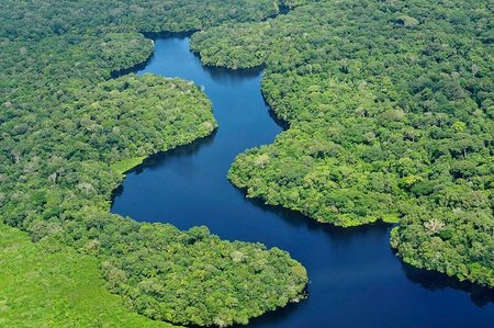 La deforestación del Amazonas continua siendo un problema
