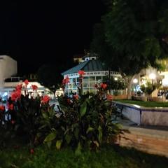 Foto 7 de 24 de la galería camara-del-razer-phone-2 en Xataka