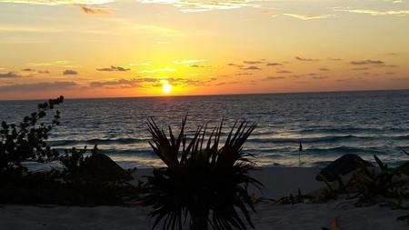 Playa Delfines en Cancún, México, habría sido vendida: adiós a una de las pocas playas públicas de Quintana Roo