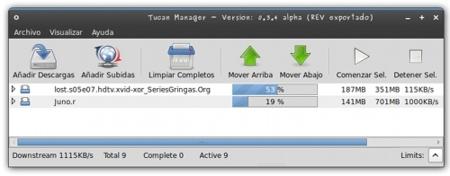 Tucan: gestor de descargas de Megaupload y Rapidshare en GNU/Linux