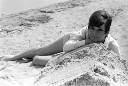 pop Audrey Hepburn