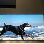 """Panasonic presenta """"MegaCon"""", su apuesta por los televisores LCD-LED con tecnología de doble panel para mejorar el contraste"""