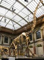 Talleres de verano en el Museo de Ciencias de Madrid