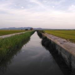 Foto 29 de 38 de la galería fotos-hechas-con-el-huawei-nova-plus en Xataka