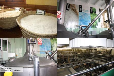 Fabricación de la cerveza